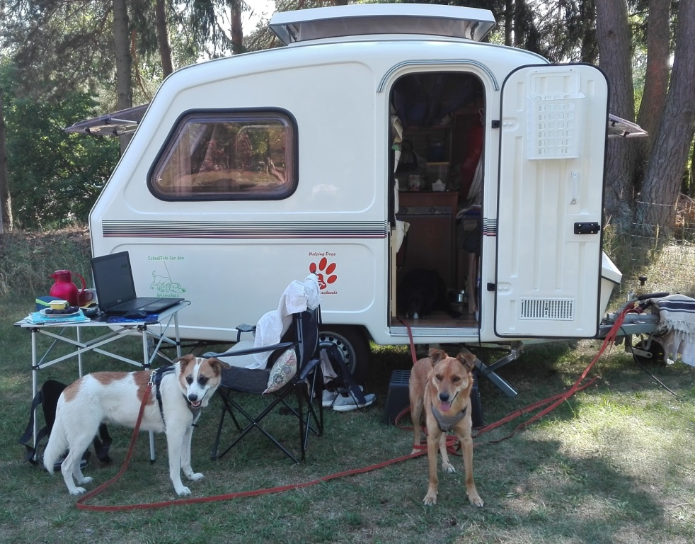 Ferienhof-Altglobsow_Youngsterboys-like-old-campers